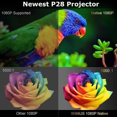 P28 Brightness and Color